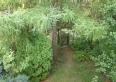 Willa Pod Jemiołą Wisła ul.Leśna 12 widok na dom wyjście nad potok Jawornik