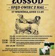 27. września 2015 - II SZCZYRKOWSKI ŁOSSOD